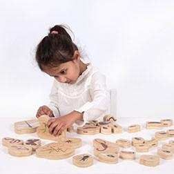 Wooden Minibeast Blocks - Pk33